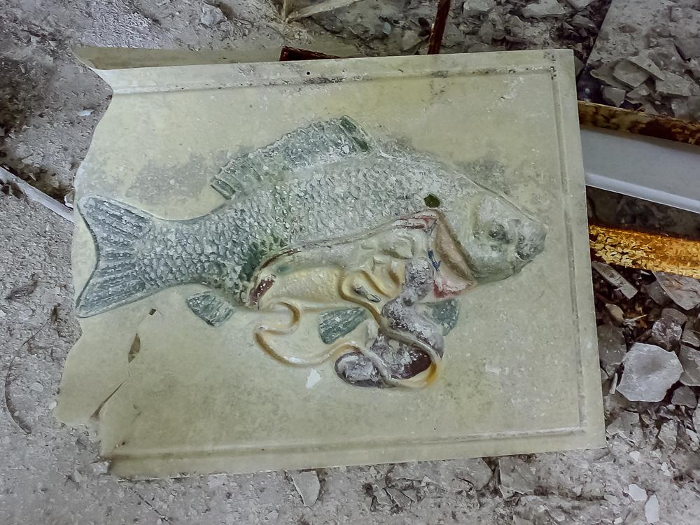 Osaatko kalan osat?